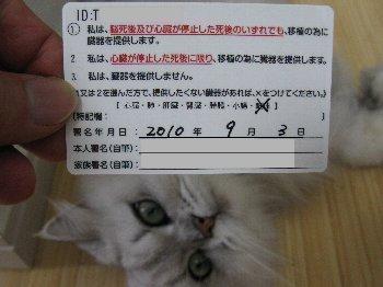 0000_2.jpg