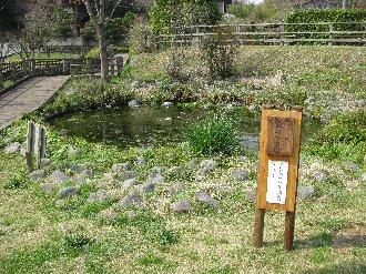 100323tsurumigawa.jpg